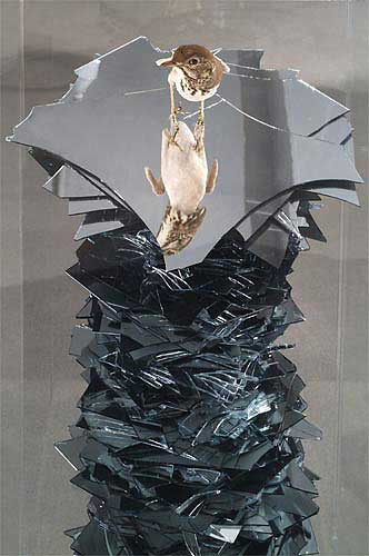 """Plucked and Fucked, 2006 Mirror, taxidermy song thrush, concrete, silicon, 45"""" x 13""""x 13""""."""